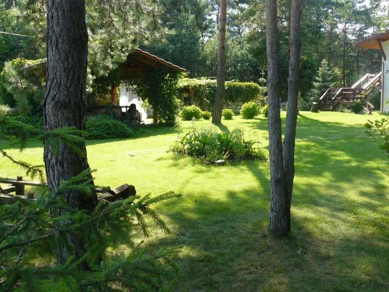 Ogród i rzeka cd.