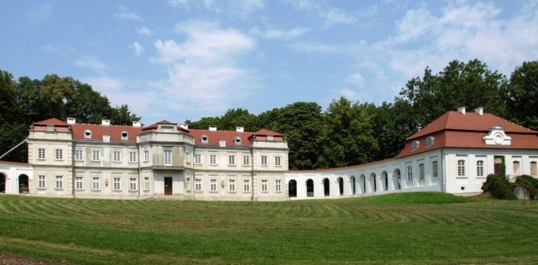 Pałac Hrabiego Łosia